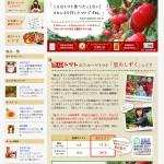 フルーツトマト原田トマトのホームページがリニューアルしました!!!