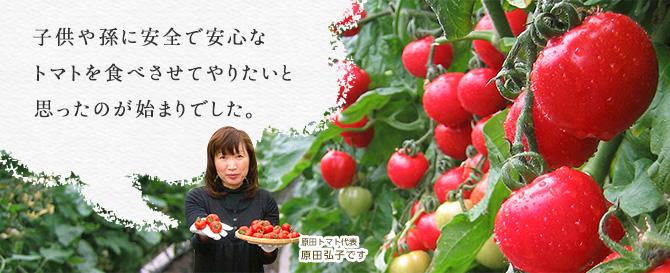 kodawari_title-02