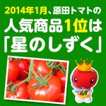 2014年1月の原田トマト人気商品はフルーツトマト「星のしずく」でした。