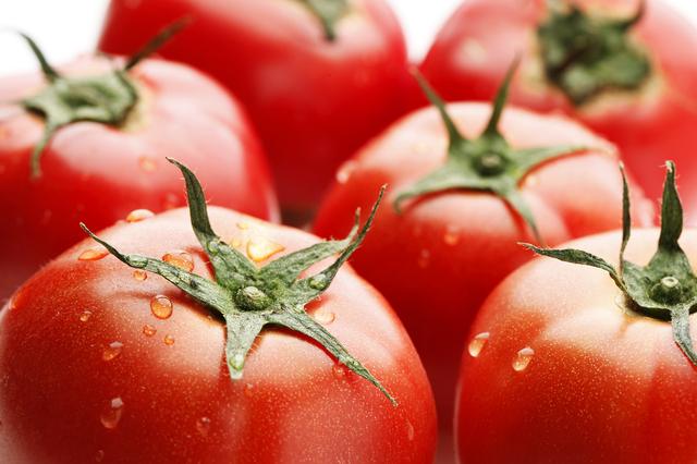 トマトの画像 p1_29