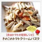 【原田トマトの簡単レシピ】きのこのトマトクリームパスタ