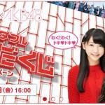アサヒ飲料のAKB48キャンペーンに、徳島代表として「赤い宝石」が採用されました!