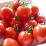 阿波市の「ふるさと納税・寄附の特典」に原田トマトが4年間採用されています!